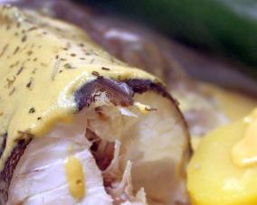 bierteig für backfisch in pfanne gebraten